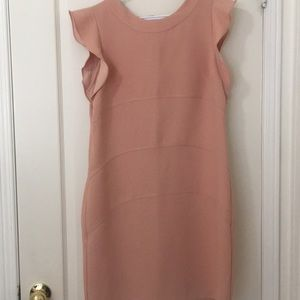 Nude semi sleeve dress from Ann Taylor